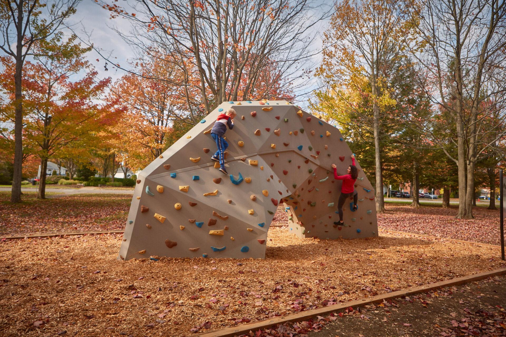 Group women exercice outdoor park